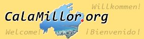 Logo calamillor.org