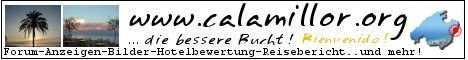 Logobanner calamillor.org